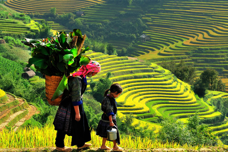 HOTDEAL: 3 NIGHTS – 2 DAYS SAPA HILL TRIBES TREK AND 1 NIGHT AT HOTEL (3 DAYS - 4 NIGHTS)